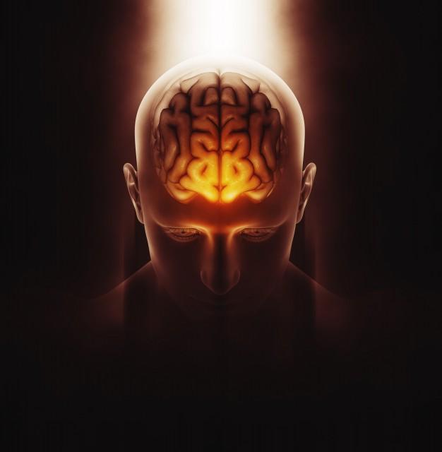 3d-render-imagen-medica-figura-masculina-cerebro-destacado_1048-5873